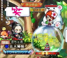 Maple100209_144631.jpg