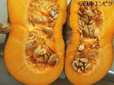 201008 西洋かぼちゃ 料理1