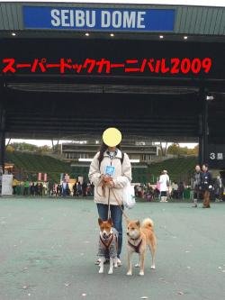 bP1100947.jpg