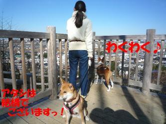 bP1120934.jpg