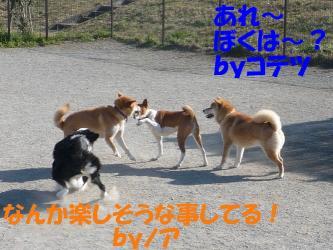 cP1120745.jpg