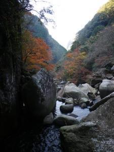 2009-12-06-014.jpg