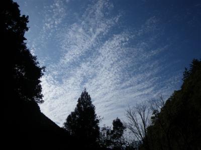 2010-01-04-113.jpg
