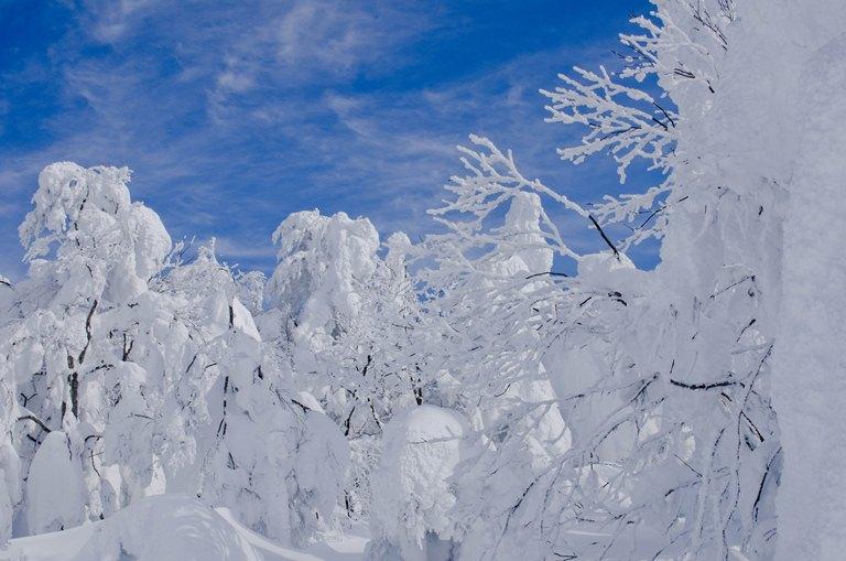 20110202-山形の蔵王