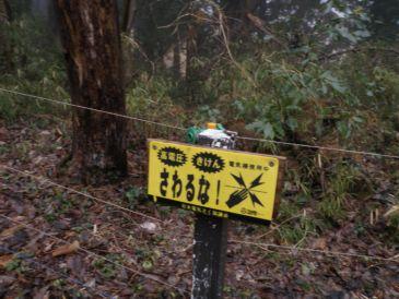 幕山ゴルフ場の電線