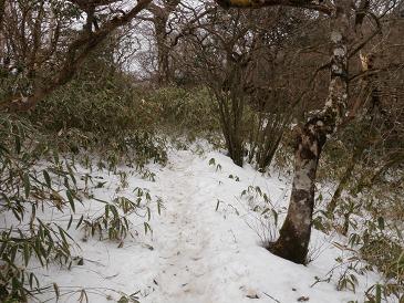 100315神山への道
