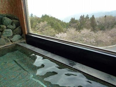 いこいの村ヘリテイジ美の山の展望風呂で桜を眺めながらまったり入浴