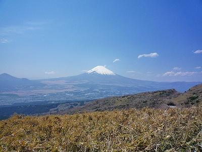 富士見ヶ丘公園から望む富士山