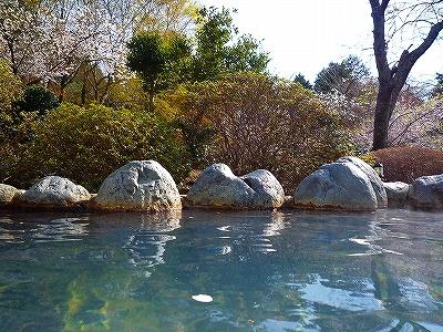 桜の花びらが浮かぶ露天風呂でまったり