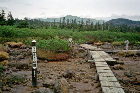 アラスカ庭園1