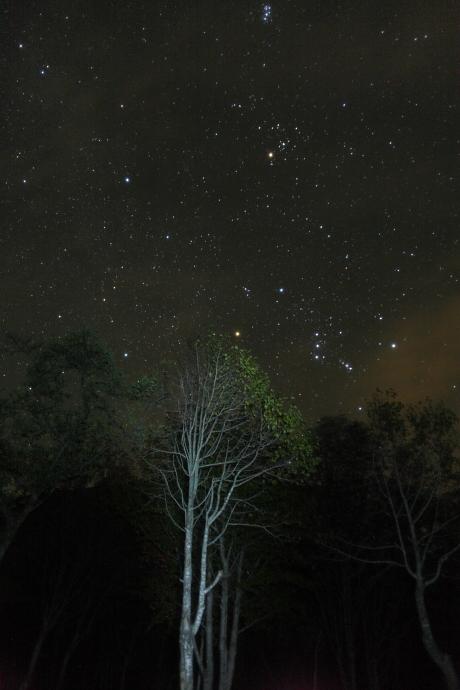 奥大山の星空