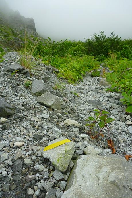 石にまかれた黄色テープ