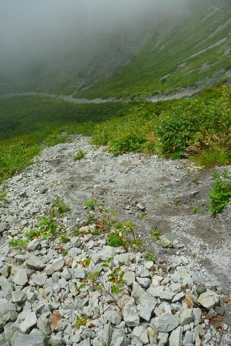 小砂利の急坂