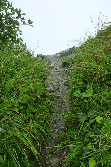 右ルート稜線合流点