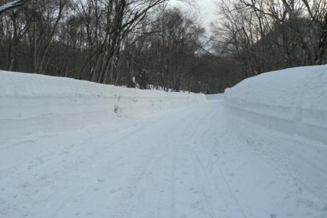 雪の回廊状態の道