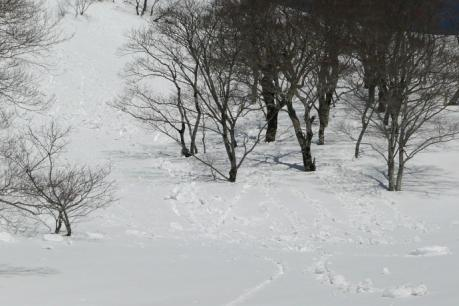 雪塊の落ちる斜面