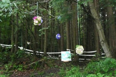 2011年6月26日きらめ樹間伐in岡山久米南町002