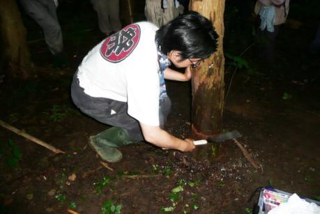 2011年6月26日きらめ樹間伐in岡山久米南町006