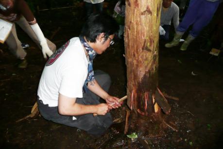 2011年6月26日きらめ樹間伐in岡山久米南町007
