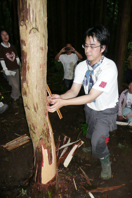 2011年6月26日きらめ樹間伐in岡山久米南町009