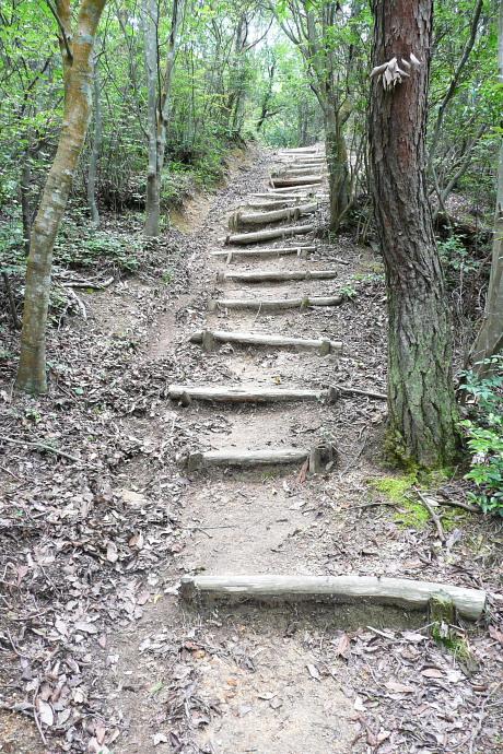 経山への登り