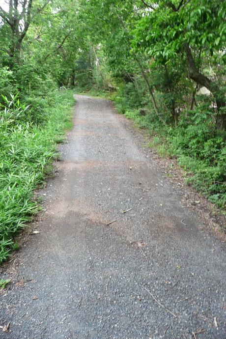 鬼ノ城山頂への道