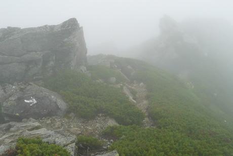 稜線ルート下り2