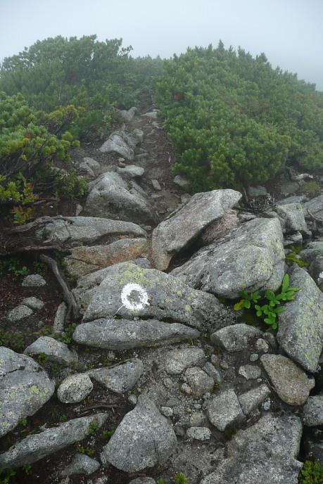 稜線ルートの巨岩終わり