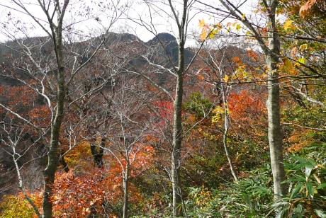 残り紅葉と烏ヶ山