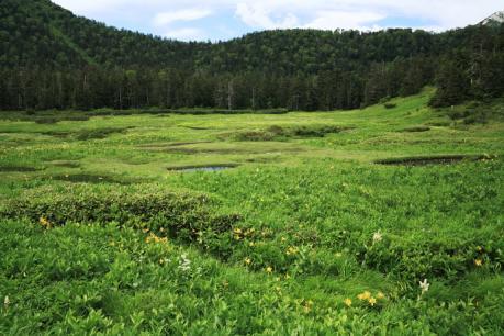 高天原湿原1