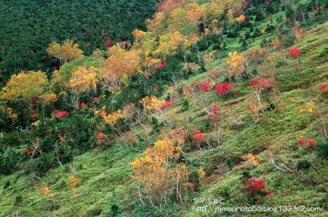高天原の秋
