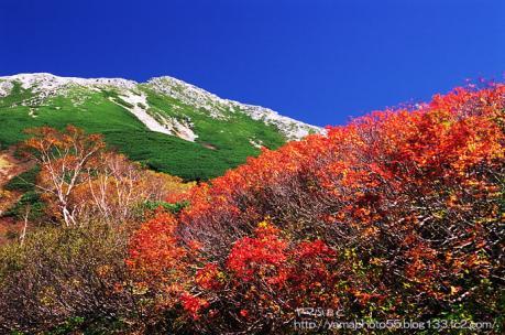 黒部源流の紅葉と鷲羽岳