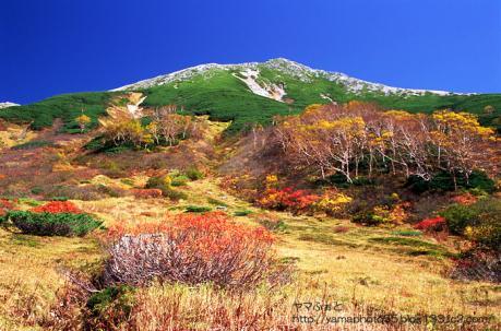 秋の鷲羽岳