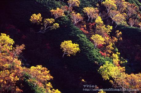 湯俣川源流の秋