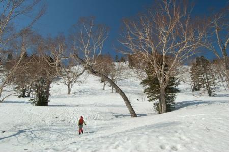 9熊沢田代への登り