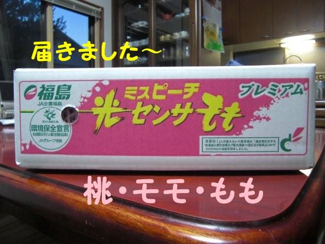 003_20100831210528.jpg