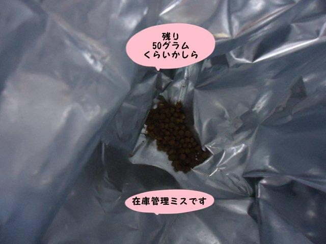 004_20130115153705.jpg