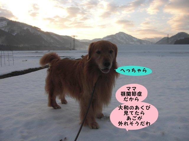 004_20130203193625.jpg