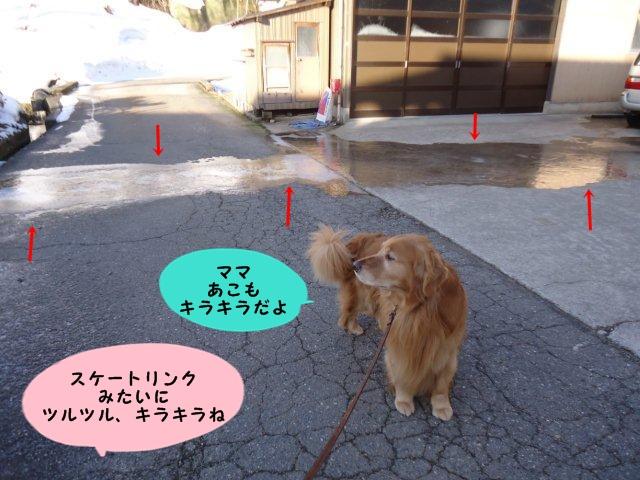 004_20130305075851.jpg