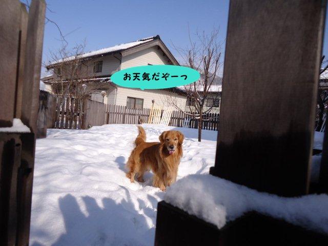 005_20130115153706.jpg