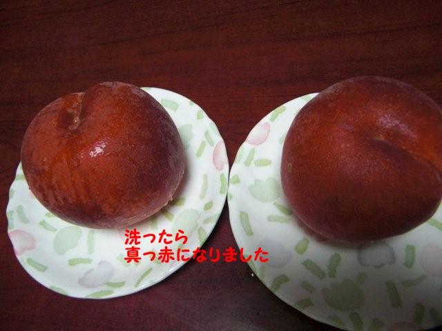 006_20100831210546.jpg