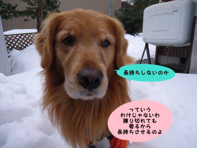 006_20130219201402.jpg