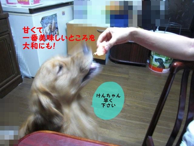 007_20100831210559.jpg
