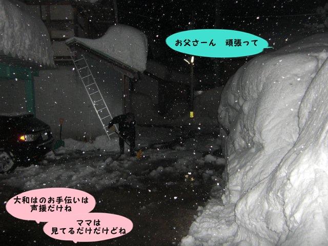 007_20110131234731.jpg