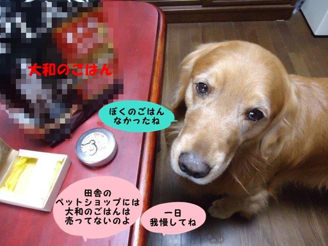 022_20130115154012.jpg
