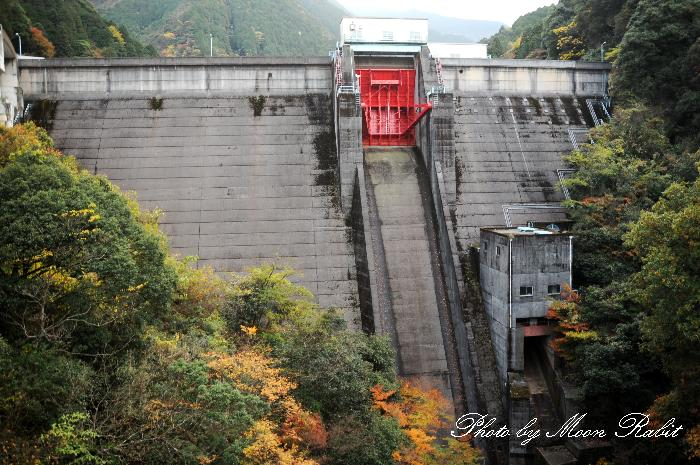 鹿森ダム・青龍橋・別子の湖と紅葉 小女郎川 愛媛県新居浜市立川町