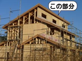 20100112_151650.jpg
