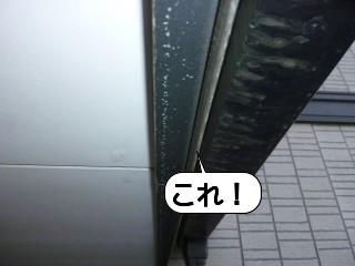 20100126_185101.jpg