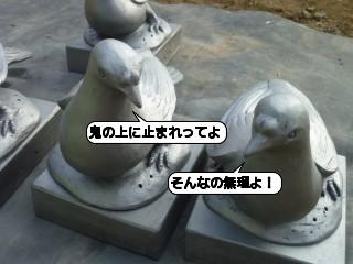 20100225_210626.jpg