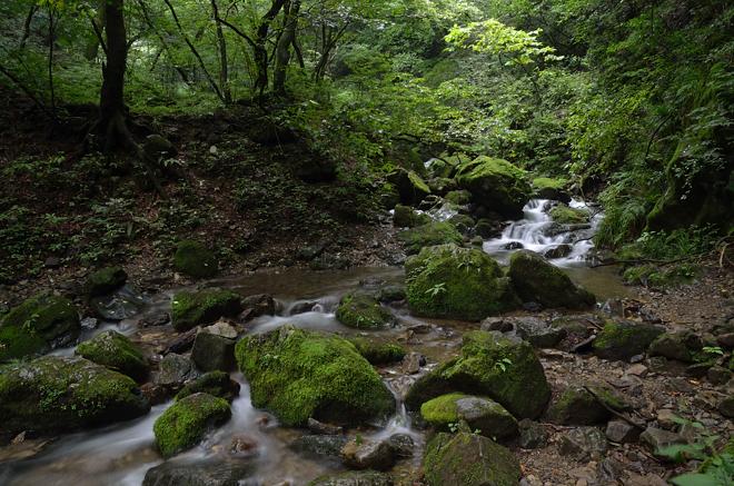 御岳山の渓流1